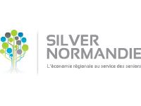 Silver Normandie